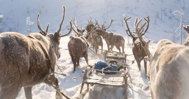 7 морозных фото из Якутии — самого холодного региона России