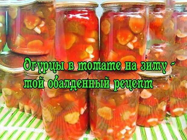 Огурцы в томатном соке – 6 рецептов на зиму