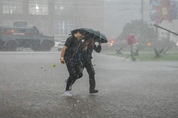 МЧС предупредило москвичей о сильной грозе со штормовым ветром