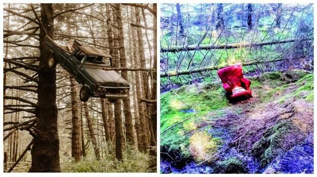 12 раз, когда люди находили в лесу вещи, которые ставили их в тупик