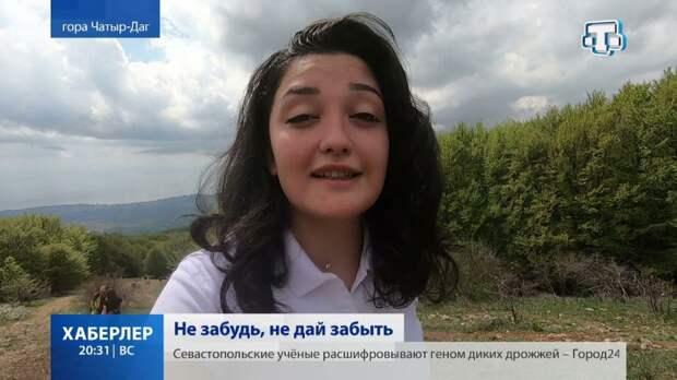 В Крыму активисты покорили Чатыр-Даг