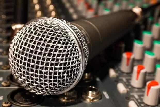 микрофон/pixabay.com