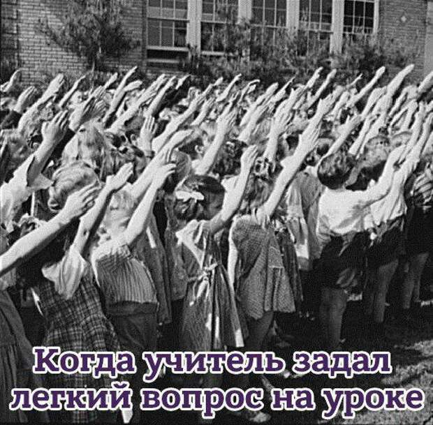 Госдума приняла в первом чтении закон о показе нацистской символики в учебных целях