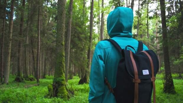 Биолог рассказал о правилах, которые помогут спасти жизнь в лесу