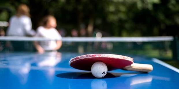 Четыре площадки для игры в настольный теннис установлены на Алёшкинском лугу