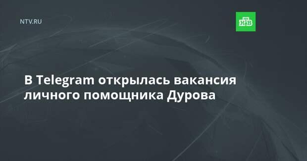 В Telegram открылась вакансия личного помощника Дурова