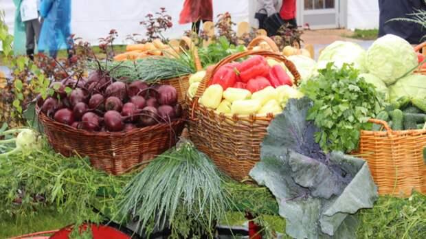 Популярные продукты помогут организму уменьшить симптомы анемии