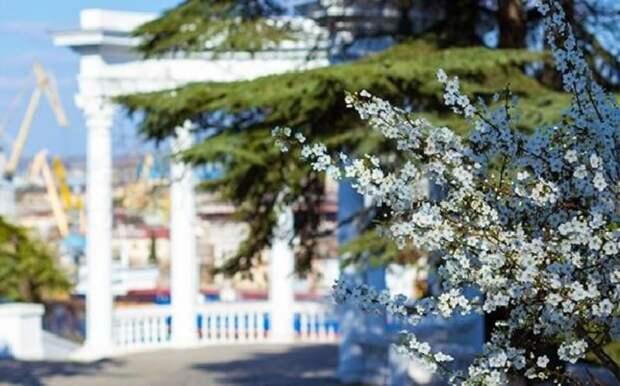 Прогноз погоды 5 мая: в Крыму и Севастополе дождя не предвидится