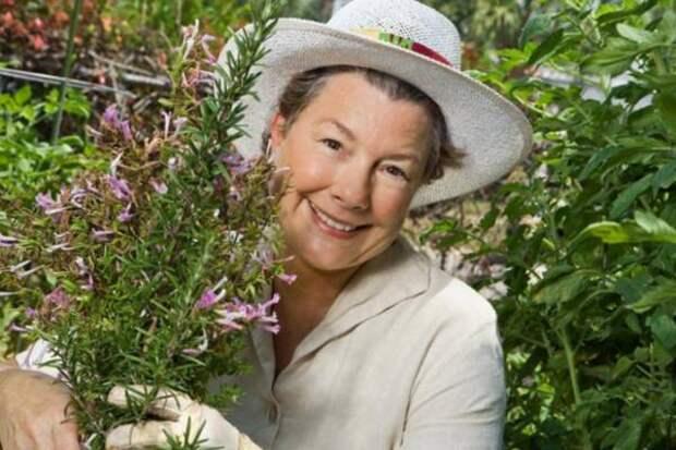 Травы для облегчения симптомов менопаузы