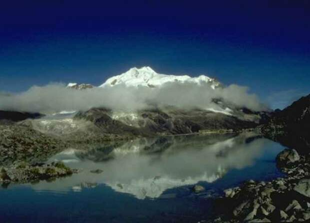 В Боливии обнаружены 20 неизвестных видов животных