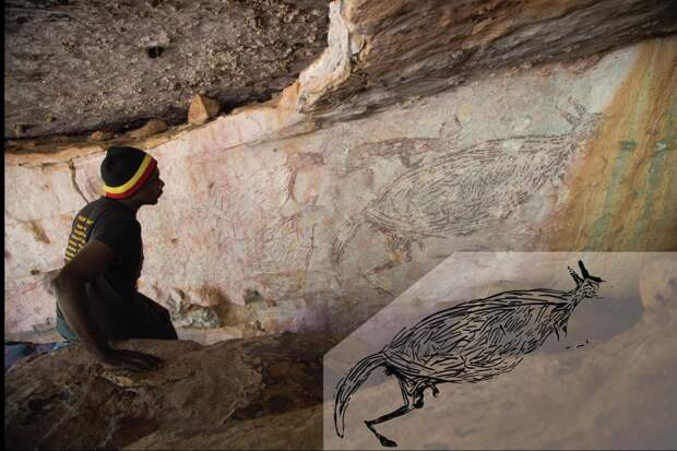 В Австралии нашли наскальный рисунок кенгуру, созданный 17,5 тысяч лет назад