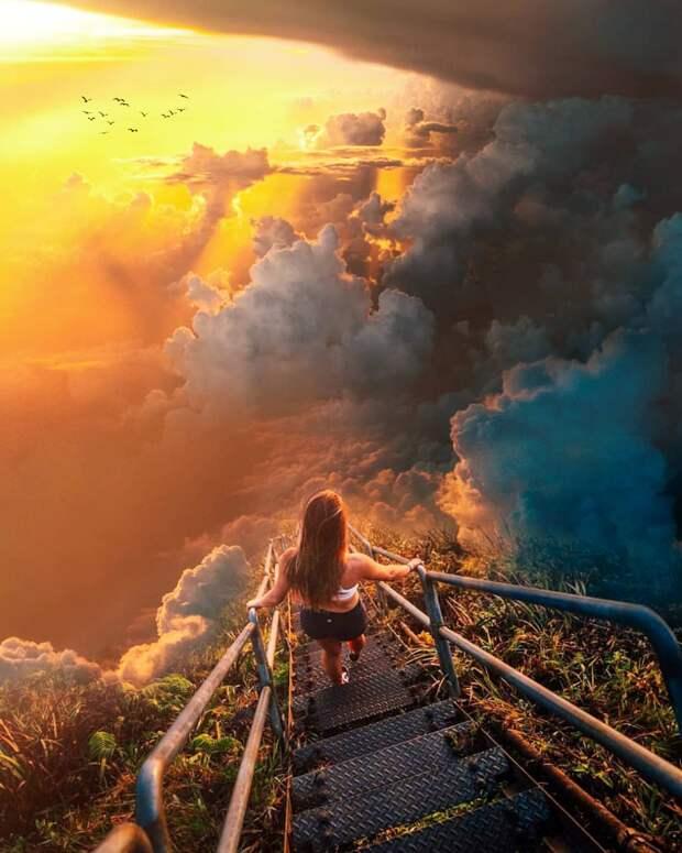 Удивительные фотоманипуляции Фарзана Риа
