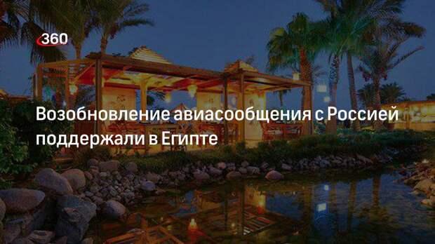 Возобновление авиасообщения с Россией поддержали в Египте