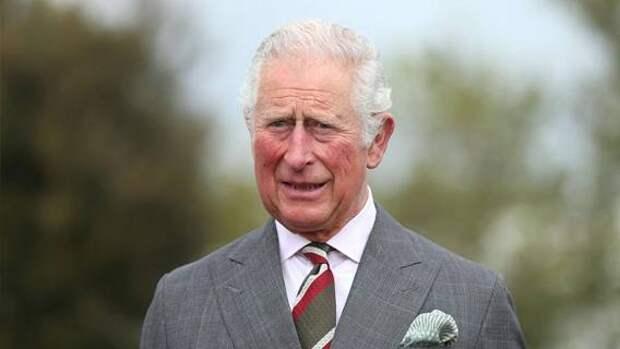 Принц Чарльз собирается открыть дворцы для публики, когда станет королем