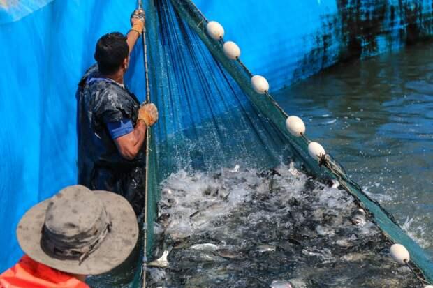 Израиль расширит рыболовную зону Газы и увеличит объемы палестинского импорта