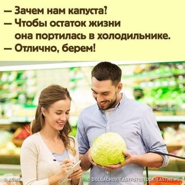 Возможно, это изображение (2 человека, люди сидят и текст «зачем нам капуста? чтобы остаток жизни она портилась в холодильнике. отлично, берем! ADME ©DOLGACHOV/EASYFOTOSTOK/EASTNEWS»)