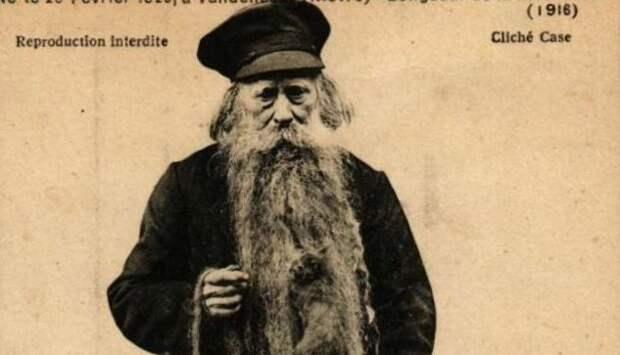 7 душевных фото деда, у которого в бороде жили кошки