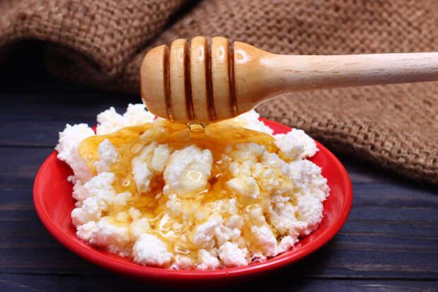 Вот почему творог и мед нужно есть вместе