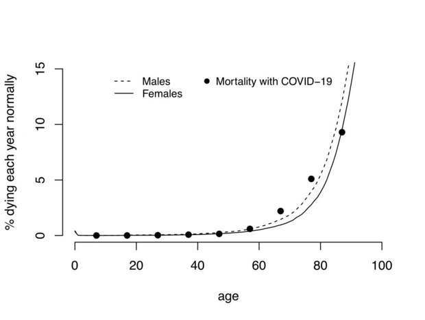 3 научных факта, почему смертность от коронавируса сильно преувеличена