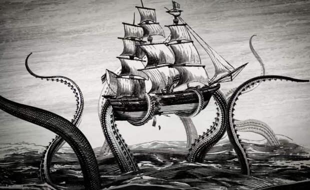Гигантский кальмар: хищник, которого боялись моряки
