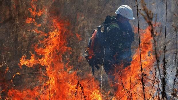 В Татарстане рассказали о пожарной безопасности в лесах