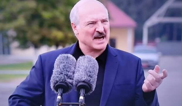 """""""Вылез как черт из табакерки"""": эксперт разоблачил Лукашенко"""