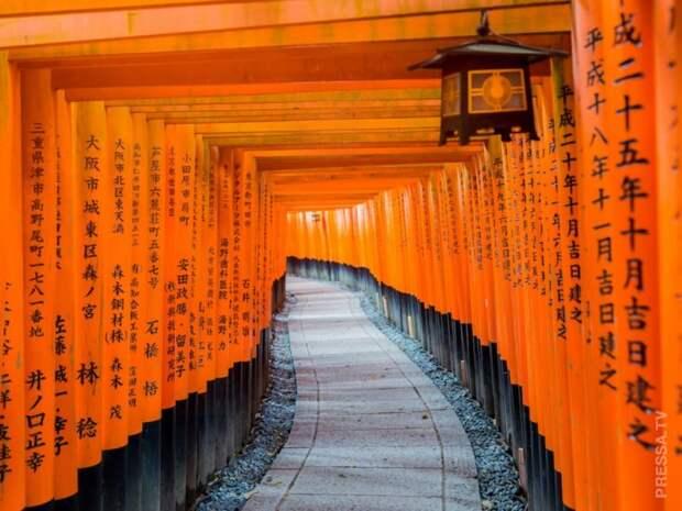Красочные фотографии Японии, после которых вы захотите туда съездить