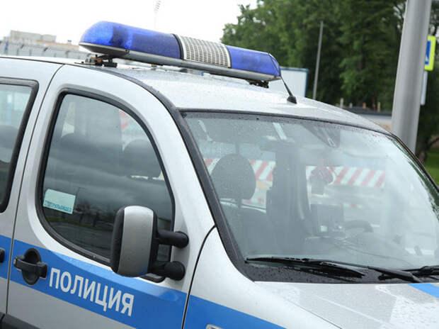 В Москве задержали маньяка, насиловавшего женщин в парке «Лосиный Остров»