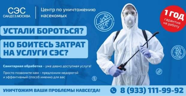 Профессиональная помощь в борьбе с насекомыми