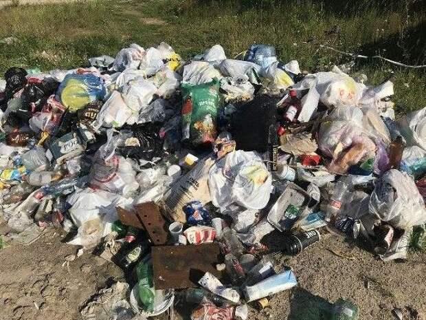 Жители Ленобласти написали «Навальный» на мешках с мусором, понадеявшись, что свалка исчезнет
