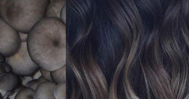 «Грибной блонд» — это новейшая тенденция в уходе за волосами для блондинок и брюнеток