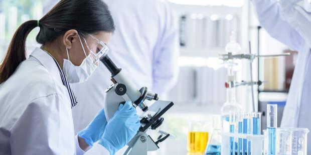 Способ очищения организма от старых клеток нашли ученые США
