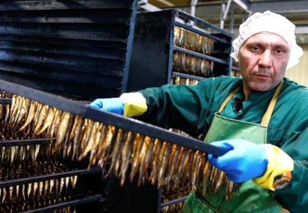 Окончательно «загнулся»: Латвия, потеряв очередной завод, поплатилась за санкции против РФ