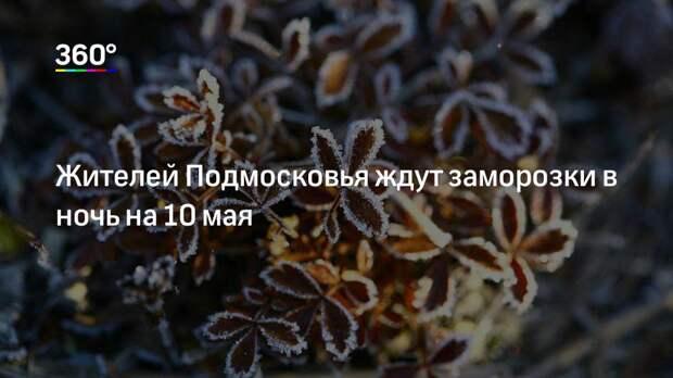 Жителей Подмосковья ждут заморозки в ночь на 10 мая