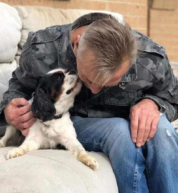 Пес и хозяин