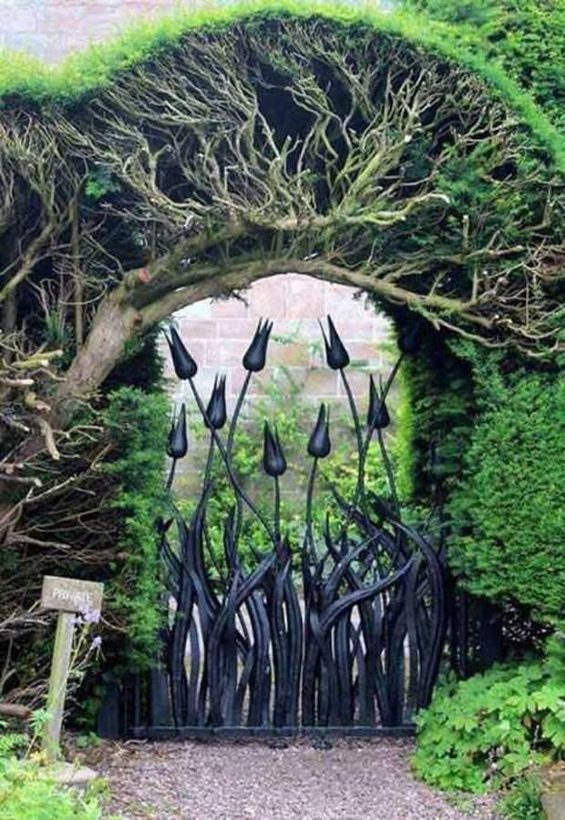 Железные тюльпаны в качестве ворот в сад.