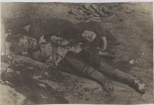 В Симферополе выставят документы, свидетельствующие о зверствах фашистов во время оккупации Крыма