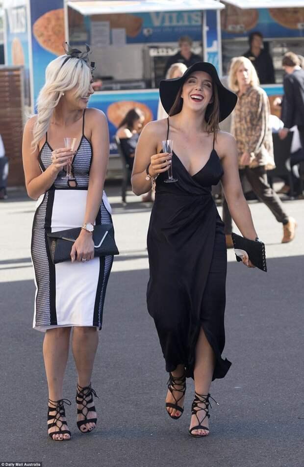 Всем скачкам скачки: австралийские леди впечатлили своими нарядами и манерами австралия, в мире, девушки, люди, скачки