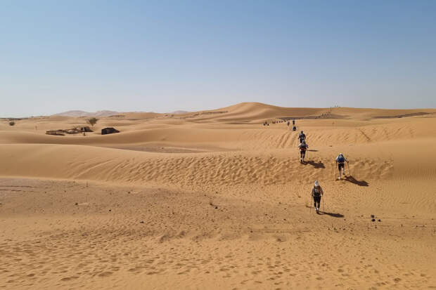 Плавятся мозги и кроссовки: как омич бежал один из самых экстремальных марафонов по пустыне