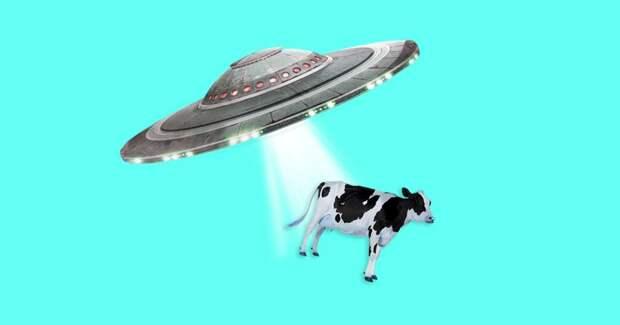 Пентагон опубликовал 3 видео с НЛО