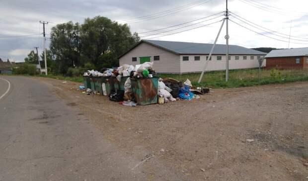 Жителям микрорайона Дубровка в Сарапуле «чужаки» подкидывают мусор