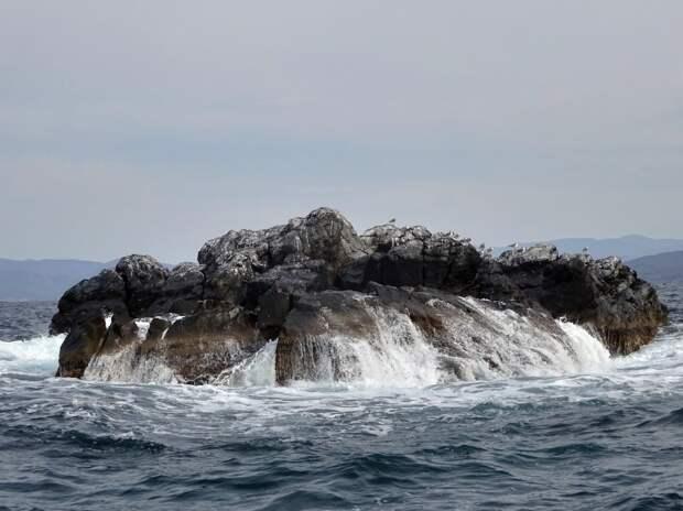 Путешествие на остров Путятина (Японское море). Начало
