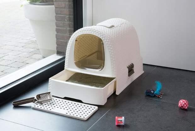 Некоторые коты боятся закрытых домиков / Фото: e.allegroimg.com