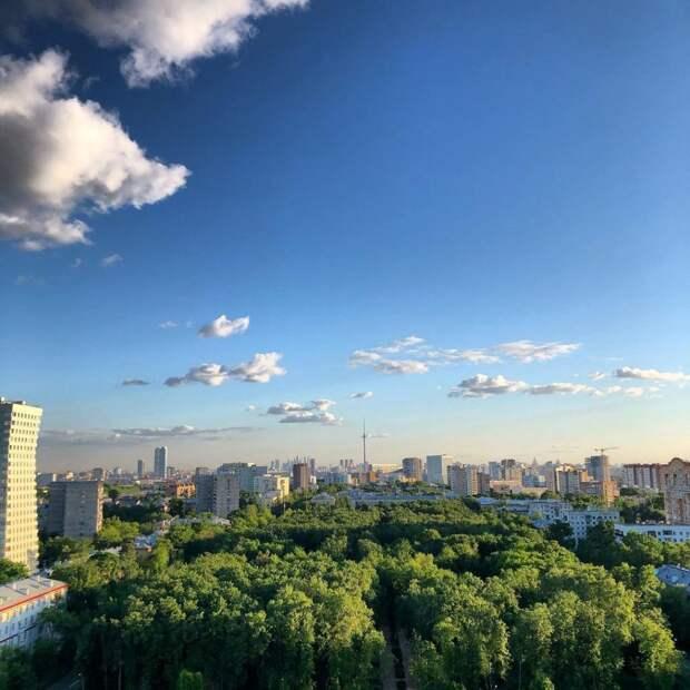 Фото дня: Центральный парк переехал из Нью-Йорка в Лосинку