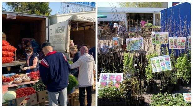 В Астрахани 24 апреля пройдет сельхозярмарка