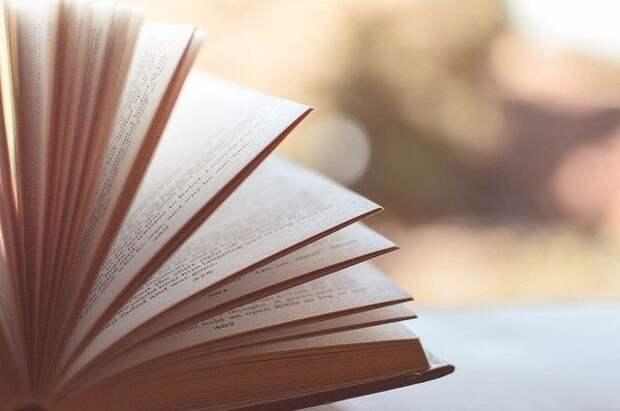 За время пандемии россияне стали чаще покупать книги в интернете