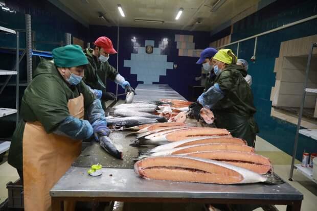 Цех по производству рыбной продукции открыли в Ангарске в рамках нацпроекта