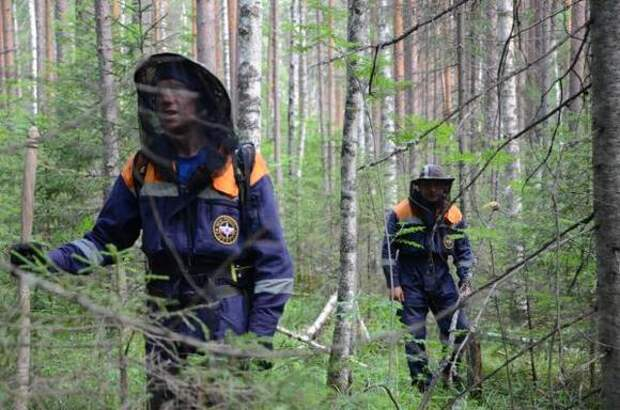 В МВД подтвердили, что лечивший Навального врач Мураховский пропал на болотах