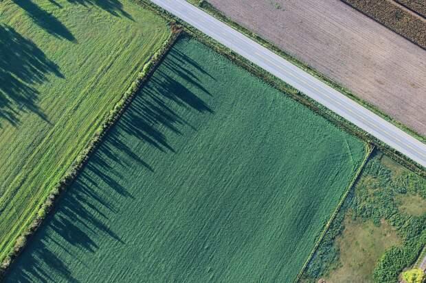 Люди поменяли почти одну пятую земной суши всего за 60 лет