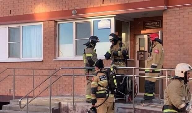 Пожарные вРостове вытащили изгорящей многоэтажки женщину скошкой
